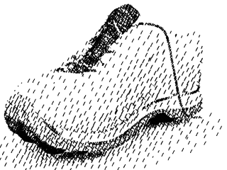 0shoe_hatching2.jpg