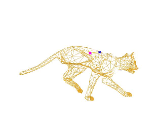 cat_running_wireframe_anim2-0160.jpg