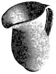 stippling-final.png