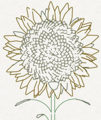 sunflowersort_crop.jpg