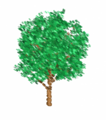 tree0.png