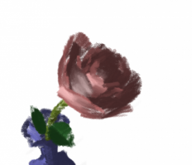 rose_zoom1.png