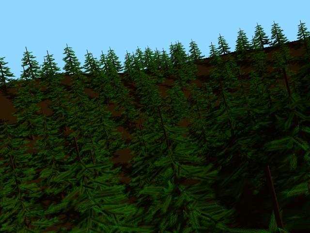 Icone de arbre.jpg