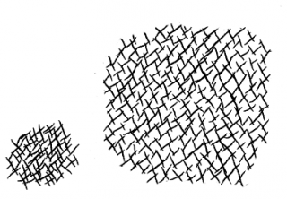 2d_cross_hatching_synth_r3_result_cliped.png