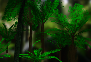 fern-forest1.png