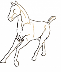 horsecol-6.png