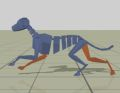 2011-quadruped.jpg