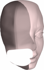 head_surface.png