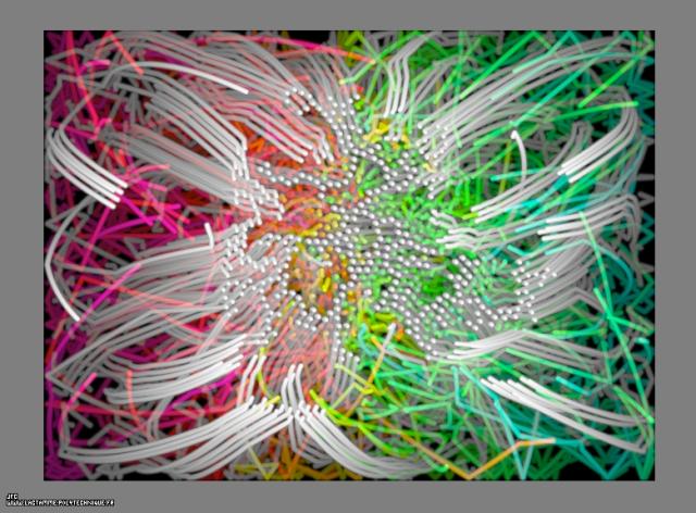 Les trajectoires des particules d'agregats fractals bidimensionnels obtenus par collage de 50% de celles-ci lors de leurs collisions, dans un champ de gravitation central attractif, Colonna Jean-François