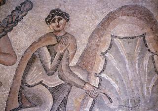 Mosaïques d'Apamée (Syrie) Ifpo n° d'inventaire : 46480, Institut Français Du Proche-Orient Ifpo