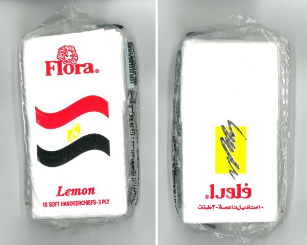 Stickers 25JAN: mouchoirs de la révolution du 25janvier 2011 en Égypte, Battesti Vincent