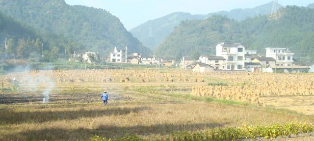 L'agriculteur à Huangshan, Ai Chi-Han
