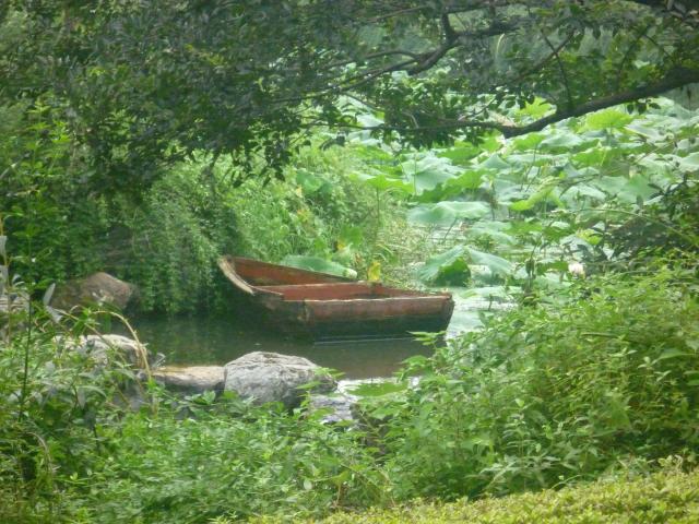 Green park in Shaoxing, Goulard Sébastien
