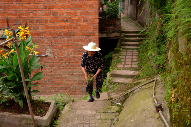 A vanishing Chongqing (III), Elosua Miguel