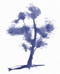 dryTree3.png