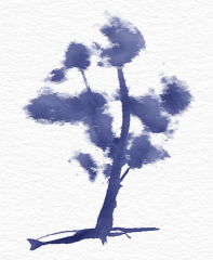 dryTree4.png